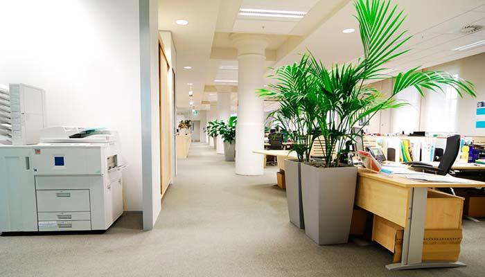 Work Image 11